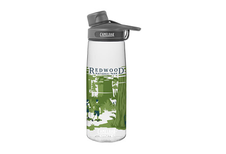 CamelBak Chute Redwood .75L Bottle
