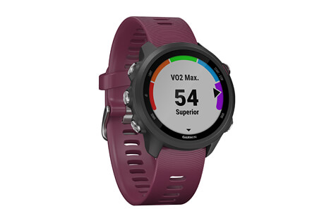 Garmin Forerunner 245 Watch