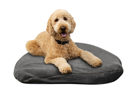 Klymit Moon Dog Bed - Small