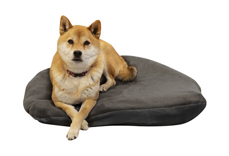Klymit Moon Dog Bed - Large