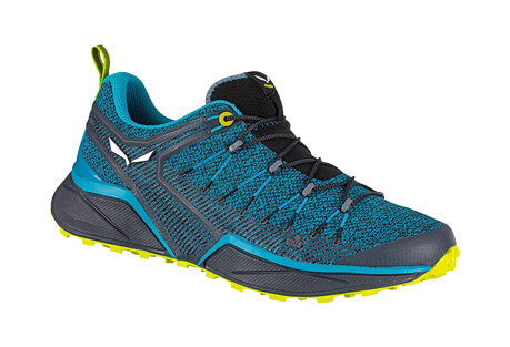 Salewa Dropline Shoes - Men's